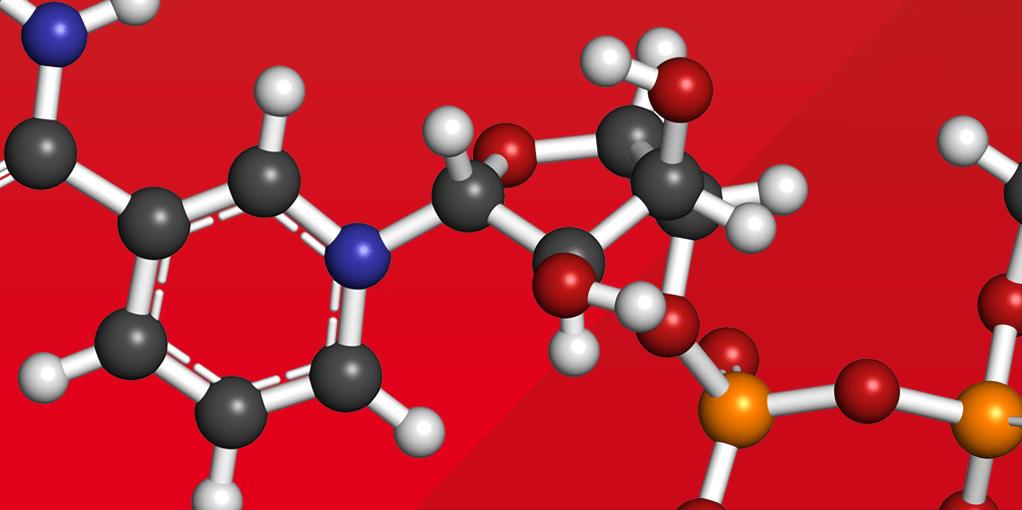 snovitra 20 mg price